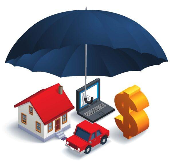راه اندازی سایت فروش بیمه